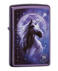 we97628 Zippo Anne Stokes Collection